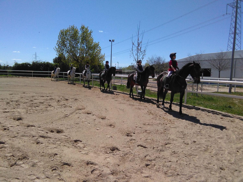 equitacion_05