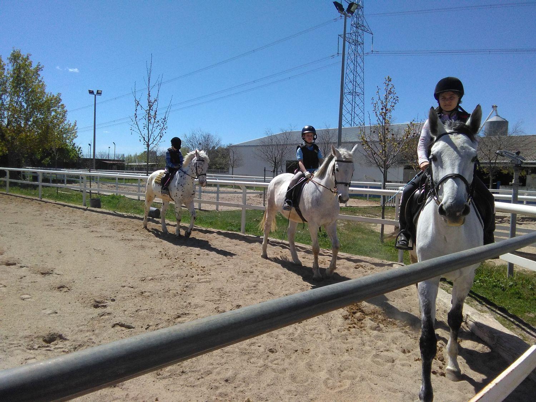 equitacion_07