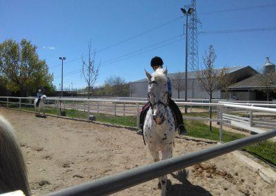 equitacion_08