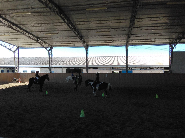 equitacion_13