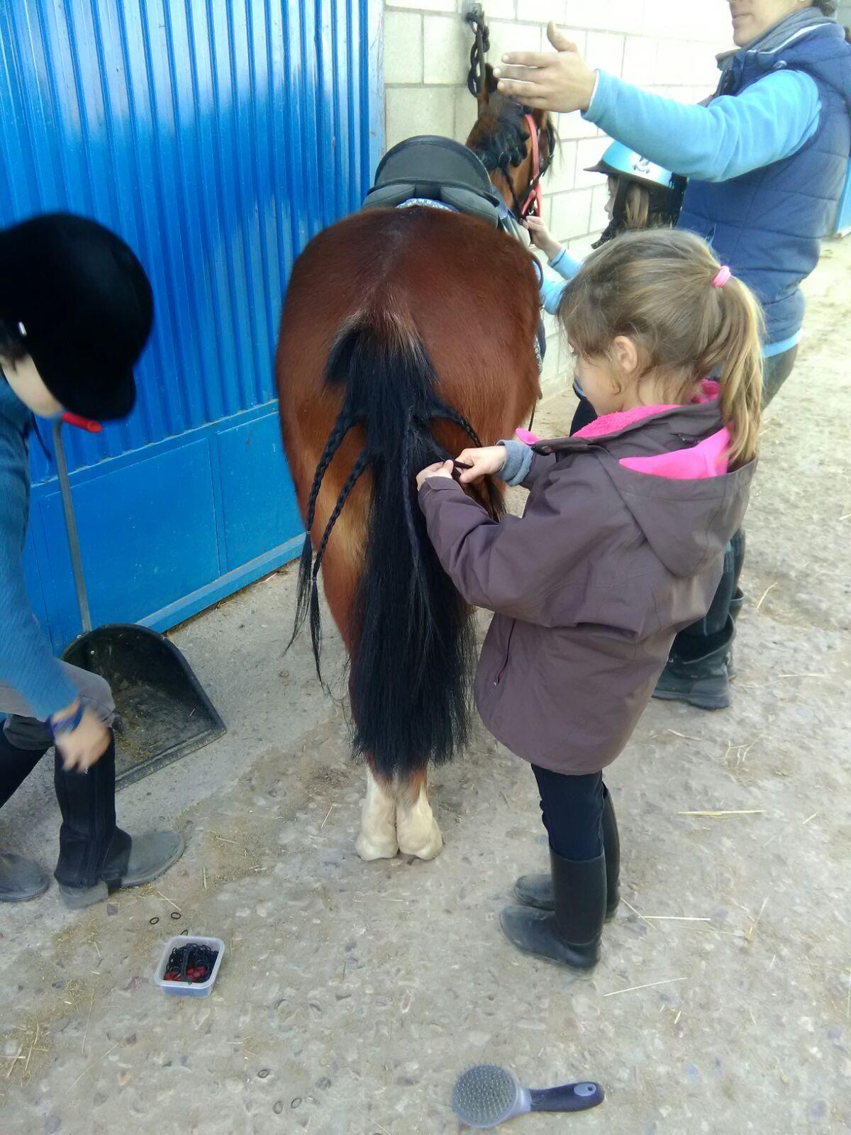equitacion_16